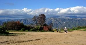 Griffith Park Los Angeles Landscape Photography