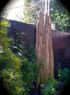 Wood as sculpture on fence