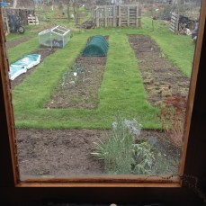 Window view of English shed