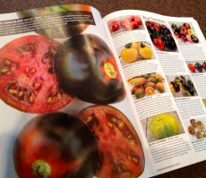 Pages showing tomatoes