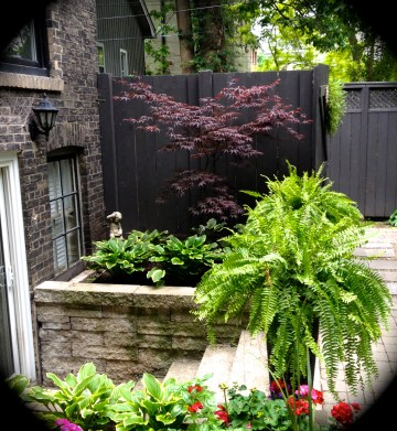 A raised bed used for ornamental plantings.