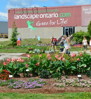 The Landscape Ontario office and trial gardens.
