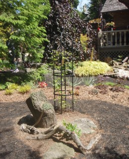Tree stumps and pieces of wood are used as garden ornaments