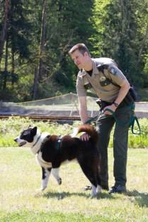 Bear dog and handler