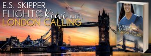 Flight of the Kiwi London Calling Facebook Cover Art