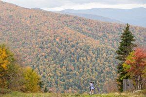 Sober October Fall landscape