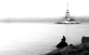 lonely COVID-19