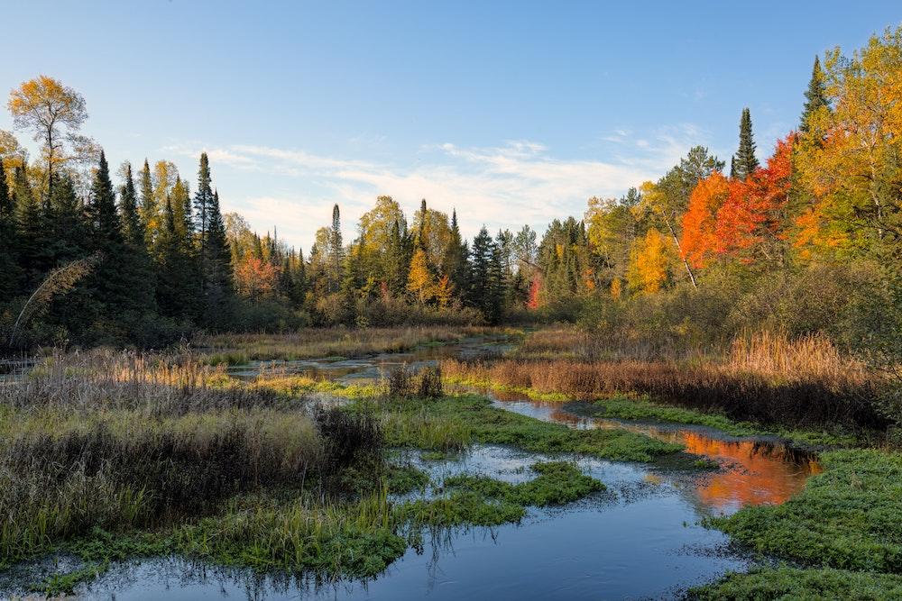 brule-wisconsin-trees-water-2021