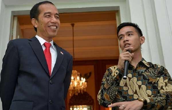 Dinasti Politik Joko Widodo