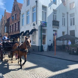 Horse and cart - Bruges
