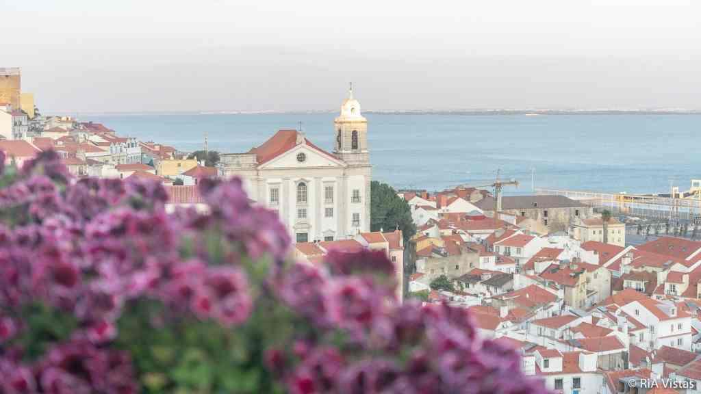 Santa Luzia Miradouro - Lisbon_RiA Vistas
