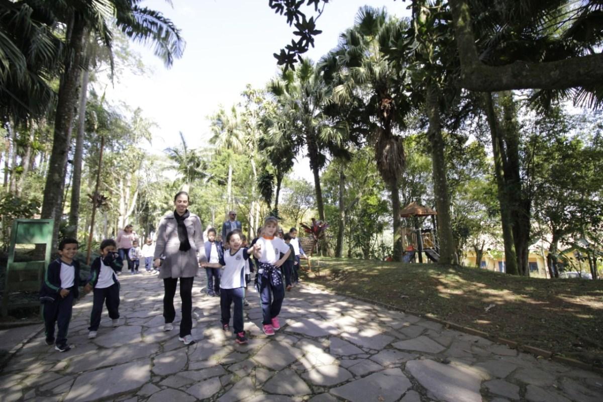 No mês em que se comemora Dia da Árvore, Ribeirão Pires realiza ações educativas