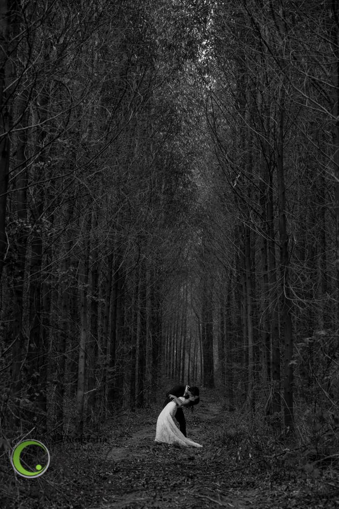 AA9C3752_fotografo_sul_de_minas_fotografo_de_casamento_