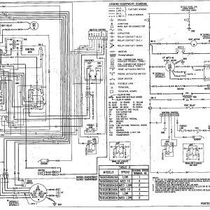 Wayne Oil Burner Wiring Diagram For Basic on