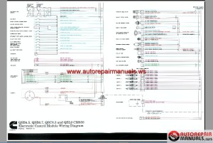 Cummins Celect Ecm Wiring Diagram   Free Wiring Diagram