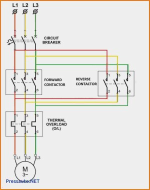 Motor Starter Wiring Diagram Start Stop | Free Wiring Diagram