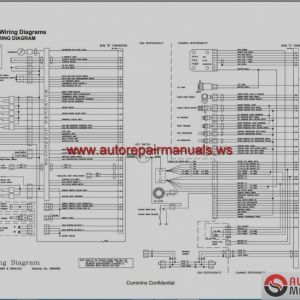 related with cummins n14 wiring diagram