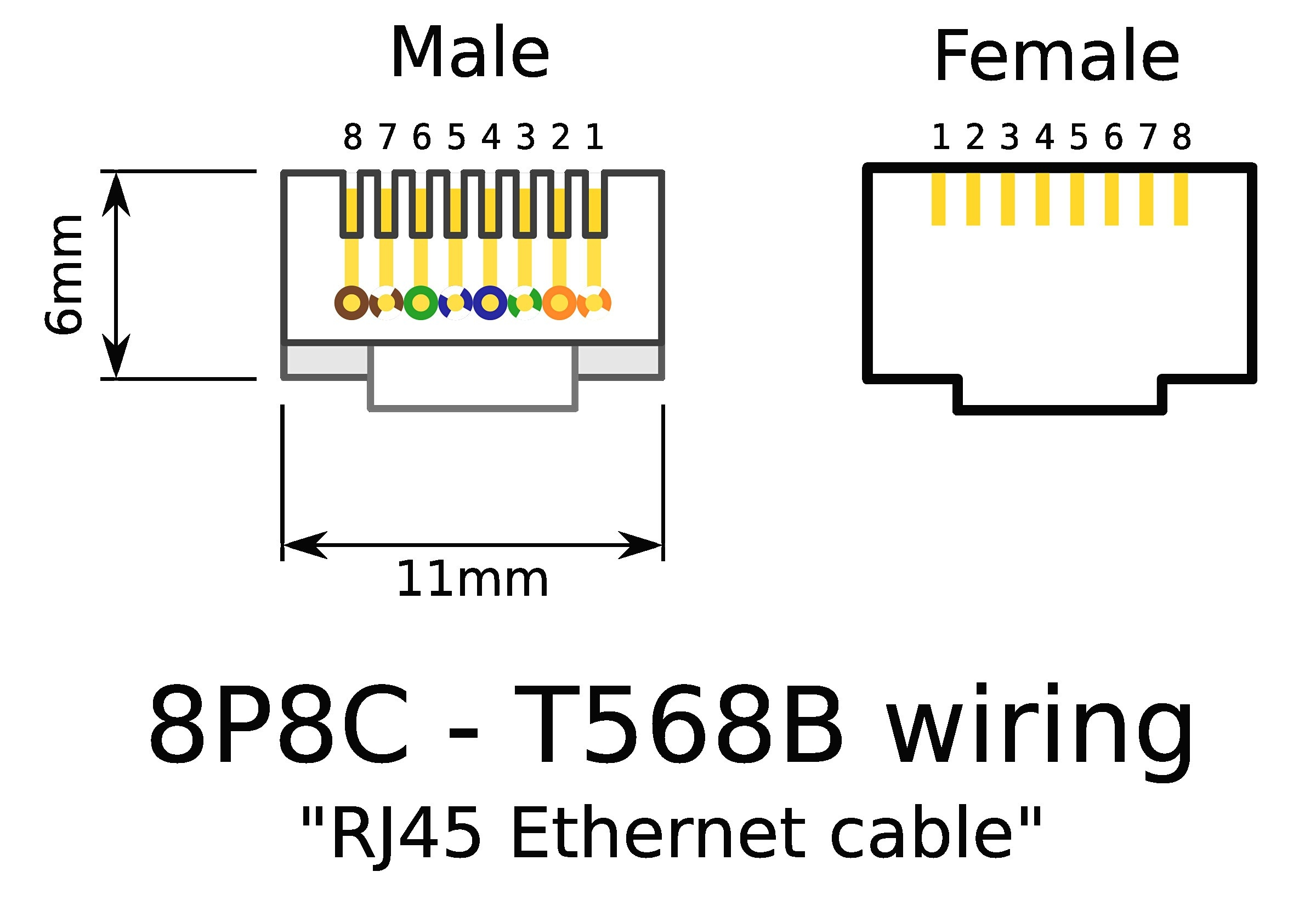 T568b Wiring Diagram