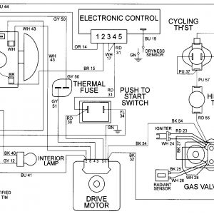 whirlpool gas dryer wiring diagram the human skeleton fill in blanks free download maytag