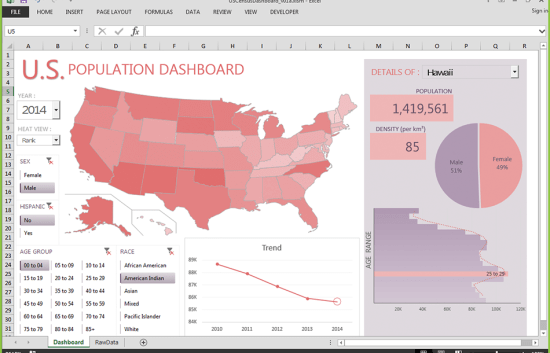 Screenshot of U.S. Population Dashboard in Excel