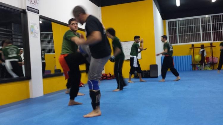 Wing Chun Funziona