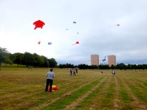 KCOS flying kites
