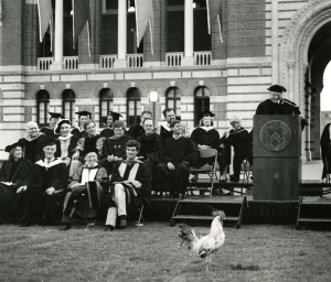 Matriculation with chicken