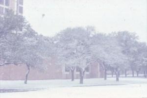 Snow January 1973