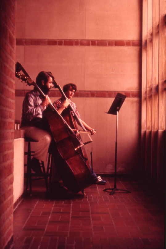 Bass players by window nd 70s slide collection
