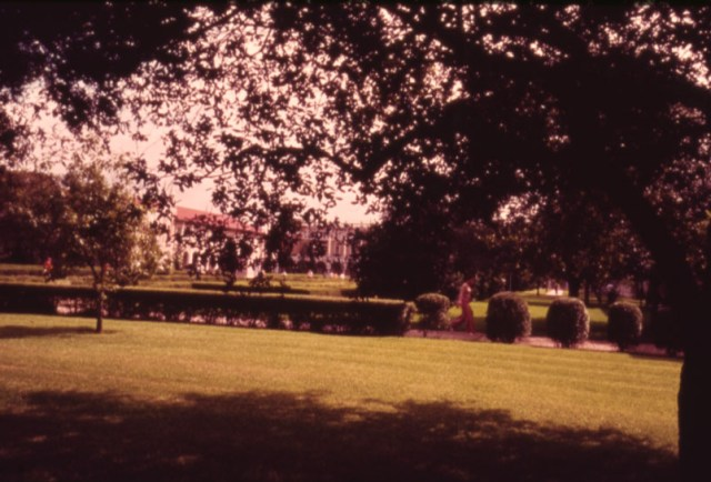 Quad with high shrubs nd 70s slide collection 2