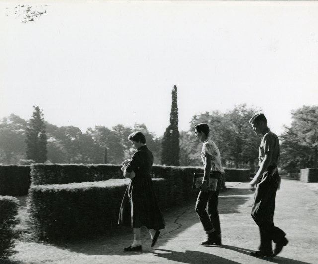1954 probably crossing street