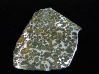 Rice Northwest Rock and Mineral Museum Meteorite Exhibit Display - meteorite11.