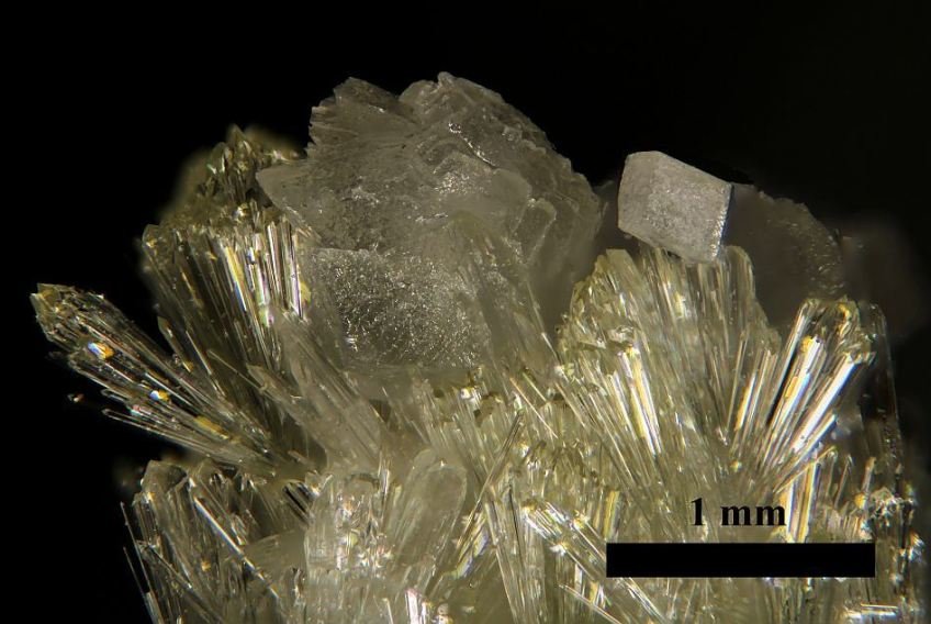 Vesunvianite 1 Ed Scale - crystal under microscope.