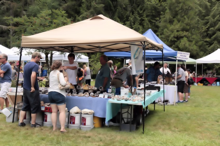 Vendor booths at Summer Fest.