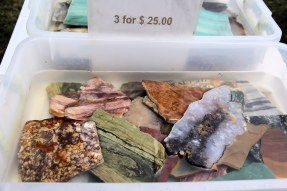 Rock slices for sale in water-filled pans 3 for $25.