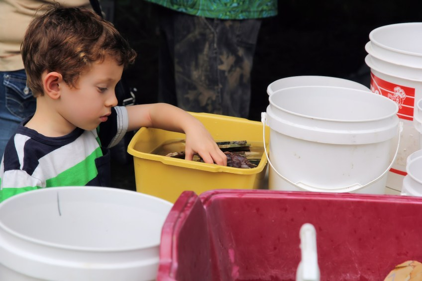 A child digs through rocks in a water-filled pan.