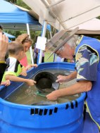Panning for gold in large blue tubs at Summer Fest.