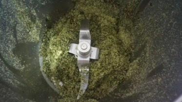 Come fare il sale aromatizzato - 12998742_1114985735201798_6445322702673838778_n