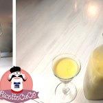 Liquore tipo Bombardino: liquore all'uovo (vov) con il Rum con il Cuisine Companion