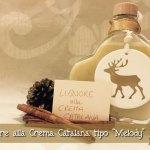 Liquore alla Crema Catalana tipo Melody con il Cuisine Companion