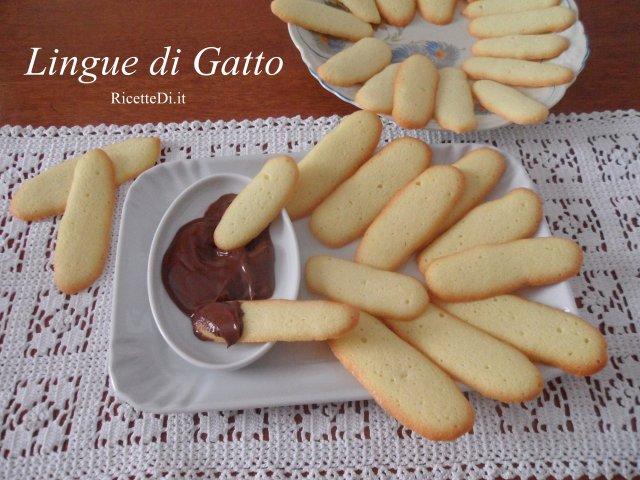 02_lingue_di_gatto