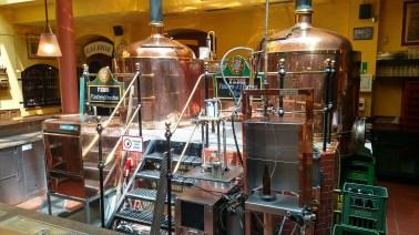7stern Brau Brewery