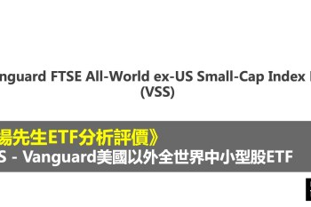 VSS 是什麼 - 市場先生評價VSS ETF