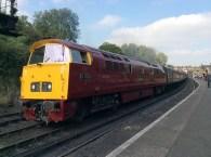 Class 52 1015 Diesel Western Champion