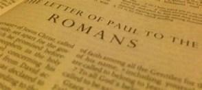 Gentiles a wild olive - Paul's description
