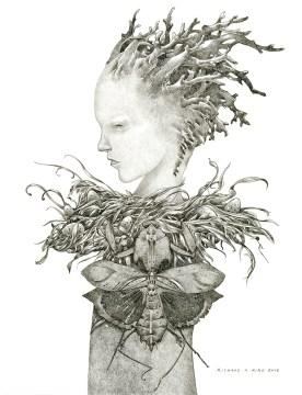 "Phantom Limb, 2013, ink on paper, 16"" x 12"""