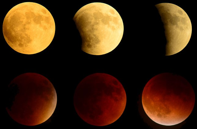 I made this lunar eclipse sequence (six images placed in one frame using Adobe Photoshop) in September 2015, using my Nikkor 400mm f/3.5 lens with a Nikkor 1.4x teleconverter. Even with an effective 560mm focal length, most of the frame was empty.
