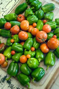 The bounty: peppers and tomatoes