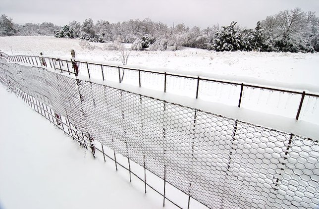 Snow and ice cover the fence in our back yard this morning, with the pasture, pond and tree line in the distance