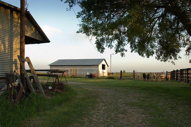 View of one of the barns on the Shoffner's place in the country outside Ryan, Oklahoma